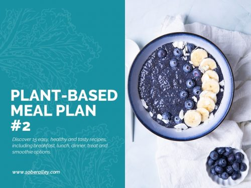 plant based meal plan weight loss