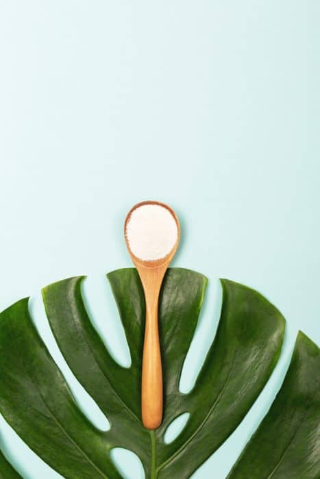 Collagen powder in measure spoon on palm leaves background. Extra protein intake. Natural beauty and health supplement. Vestical shot. Plant based collagen concept. Flatlay, top view. Copy space.