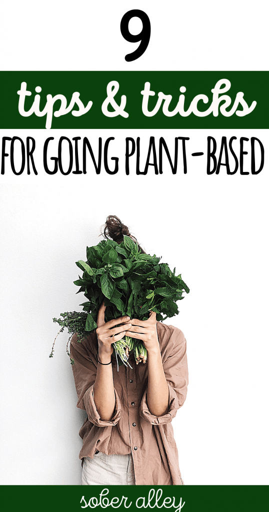 9 Tips For Transitioning To A Plant-Based Diet For Weight Loss (Vegan Weight Loss Ideas)
