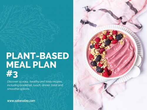 plant based weight loss meal plan fasting